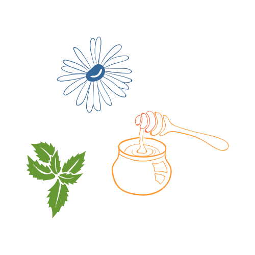 illustration of honey and tea herbs
