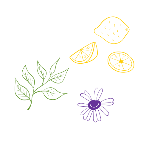 illustration of chamomile, lemon and herbs