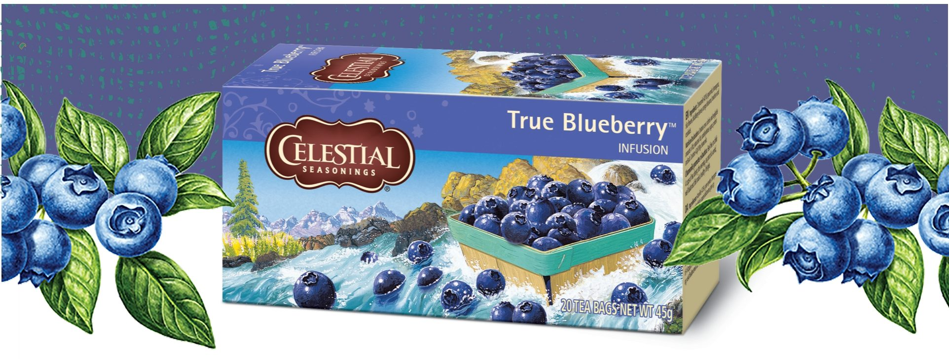 true_blueberry_titel